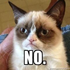 """Grumpy Cat says """"NO"""""""